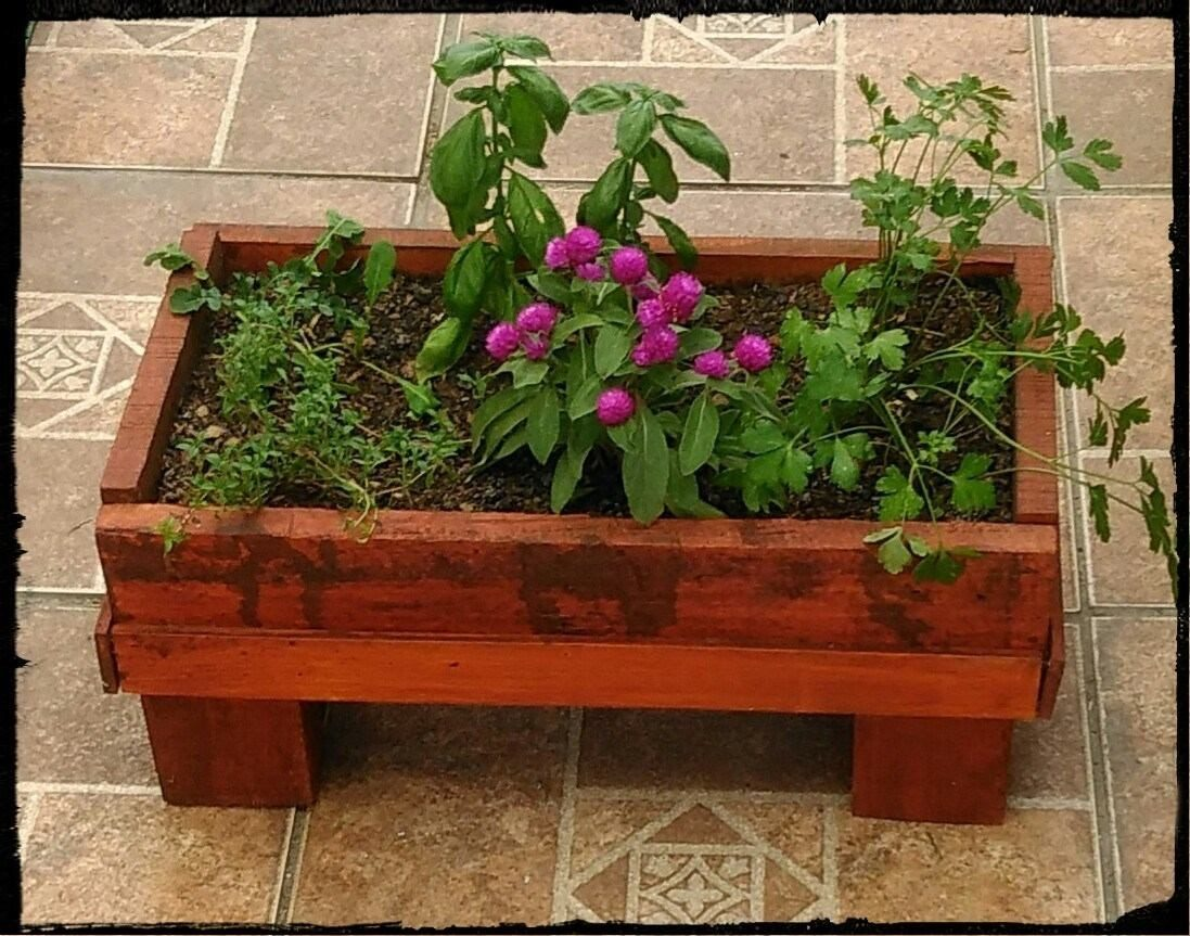 Jardinera con plantas florales y o arom ticas - Jardineras con plantas ...
