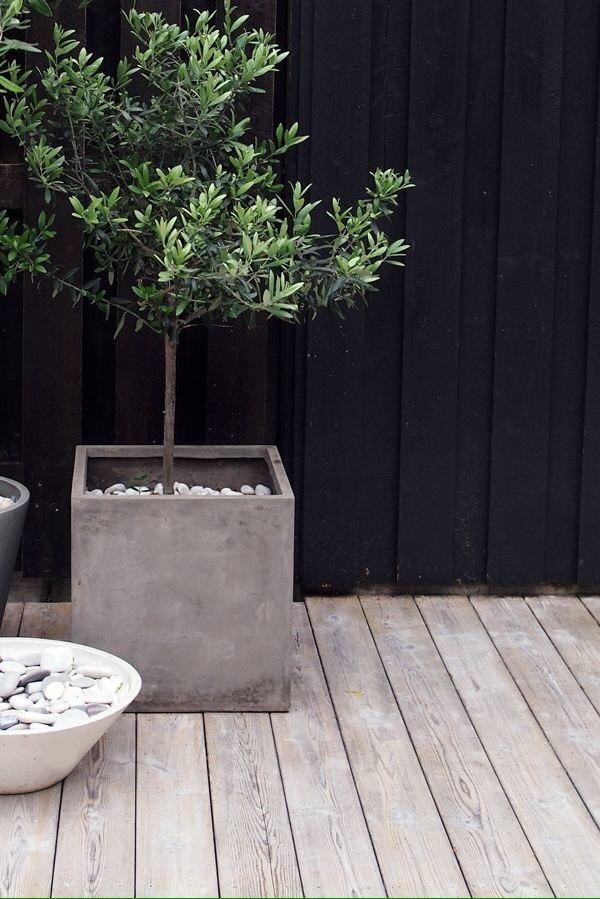 jardinera matero diseo minimalista forma cubo