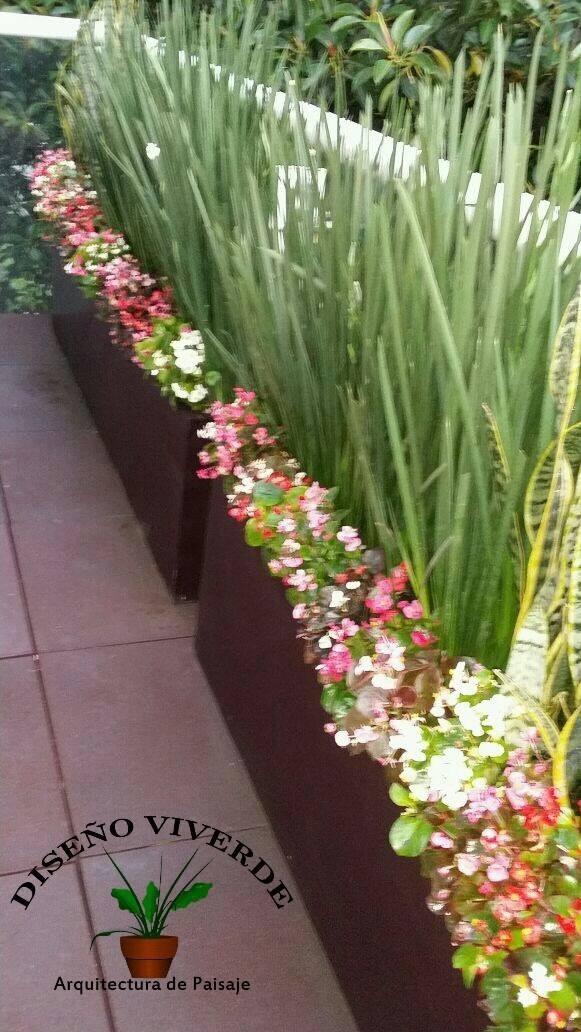 Jardineras de fibra de vidrio en mercado libre - Plantas para jardineras exteriores ...