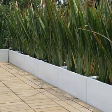 Jardineras de fibra de vidrio en mercado libre for Plantas minimalistas para exteriores