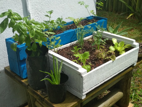 jardineras rústicas de pallets - espacios reducidos