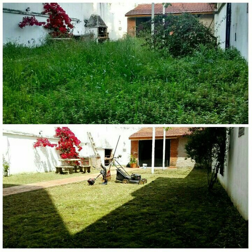 jardineria en general, corte de cesped, poda de enredaderas.