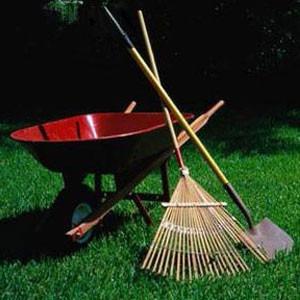 jardineria en general, corte de césped, poda, etc.
