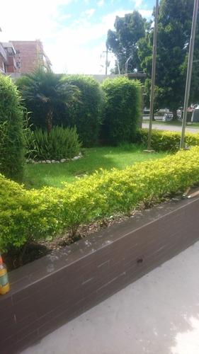 jardinería hoyos a domicilio