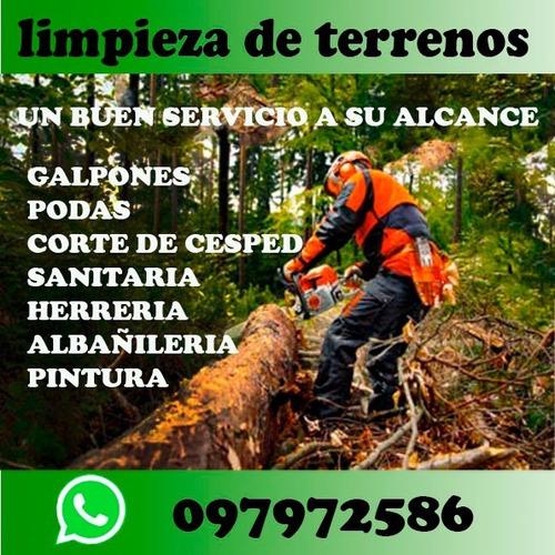 jardineria, limpieza de terrenos poda y tala  de árboles