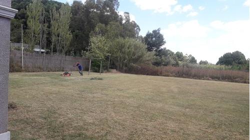 jardineria , mantenimiento de jardines
