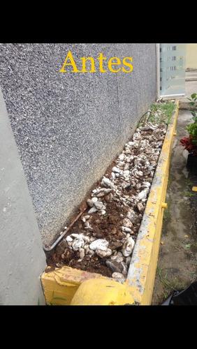 jardineria mantenimiento servicio