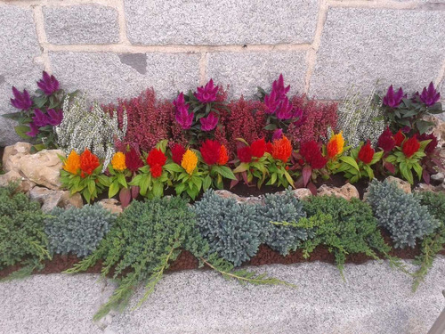 jardineria paisajismo limpieza de terrenos parques poda tala