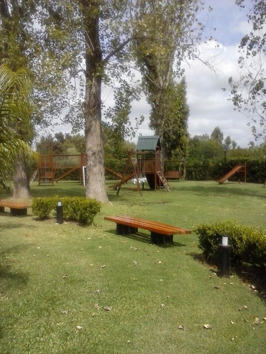 jardinería, paisajismo, mantenimiento,