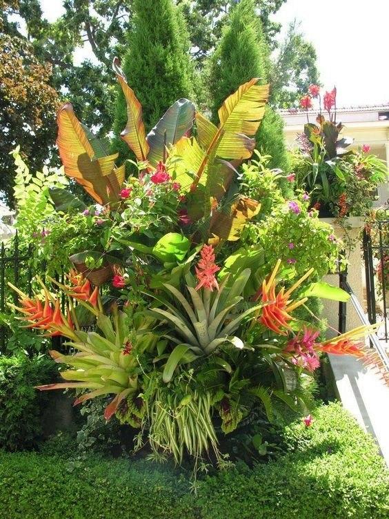 Jardiner a paisajismo mantenimiento de jardines en for Trabajo de mantenimiento de jardines