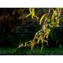 Sauce Eléctrico. Plantas, Árboles, Palmeras, Arbustos