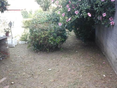 jardineria podas limpieza de terrenos corte de pasto