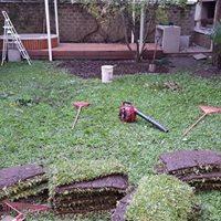 jardineria y paisajismo velverde