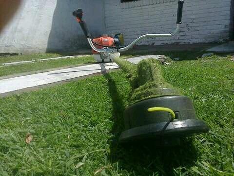 jardinero a domicilio , jardineria tigre