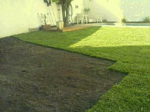 jardinero a domicilio , mantenimiento de jardines