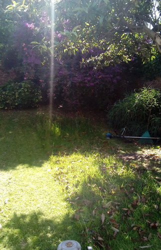 jardinero caba y gba norte. malva jardinería.