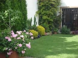 jardinero. mantenimiento. colocación plantas. paisajismo.
