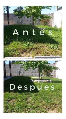 jardinero, mantenimiento de cesped, podas y mas