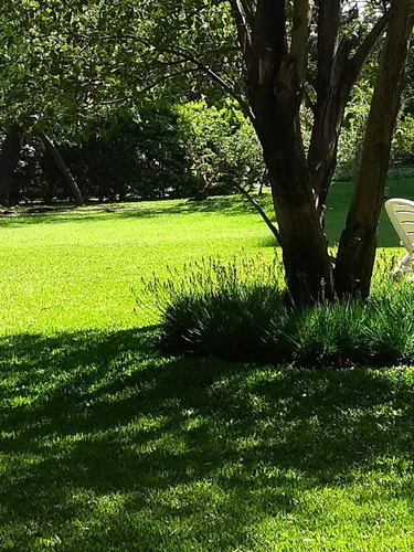 jardinero zona sur