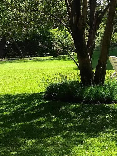 jardinero zona sur ( ver descripcion de zonas )
