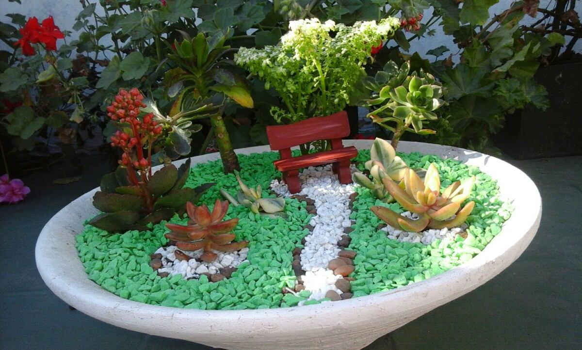 jardines cactus sucu