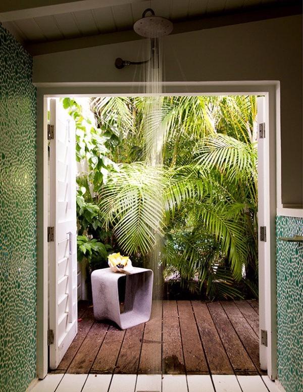 Jardines de invierno palmeras y plantas 200 00 en for Jardines de invierno fotos