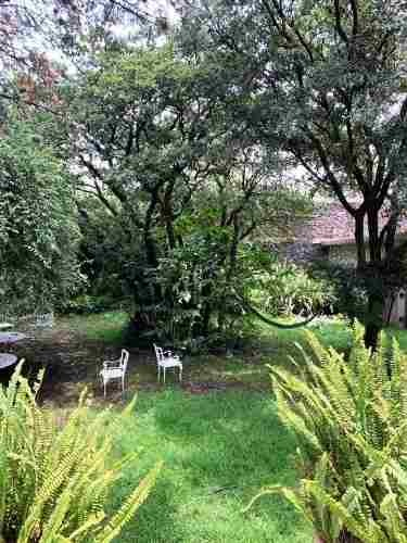 jardines del pedregal  - alvaro obregon