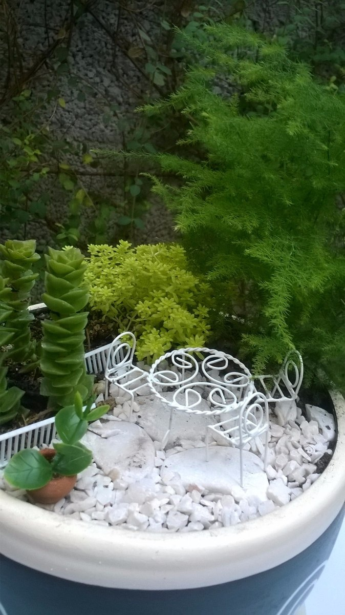 jardines miniatura cargando zoom - Jardines En Miniatura