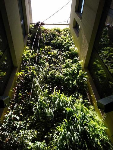 jardines vertical, muro verde, mantenimiento y diseño