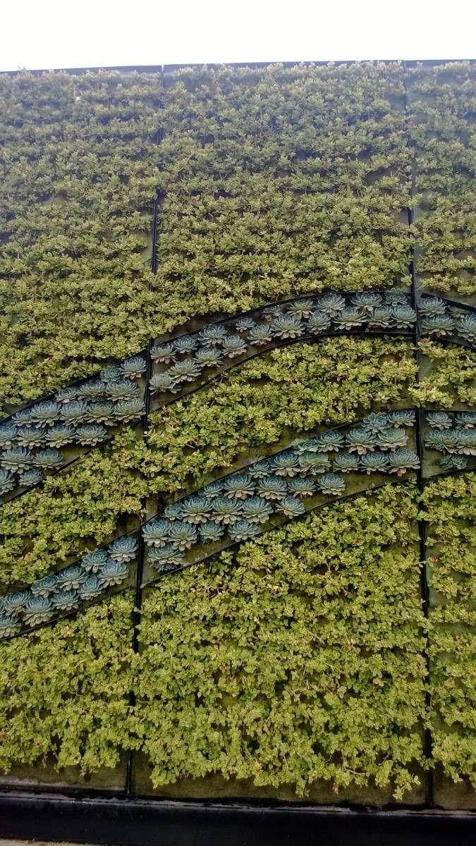 Jardines verticales en mercado libre - Jardines verticales exterior ...