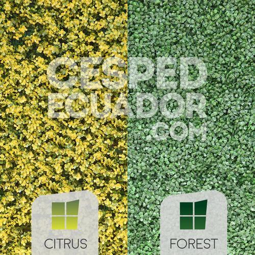 jardines verticales artificiales con protección solar costa