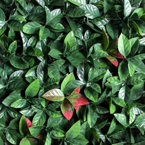 jardines verticales artificiales guayaquil envíos todo ec