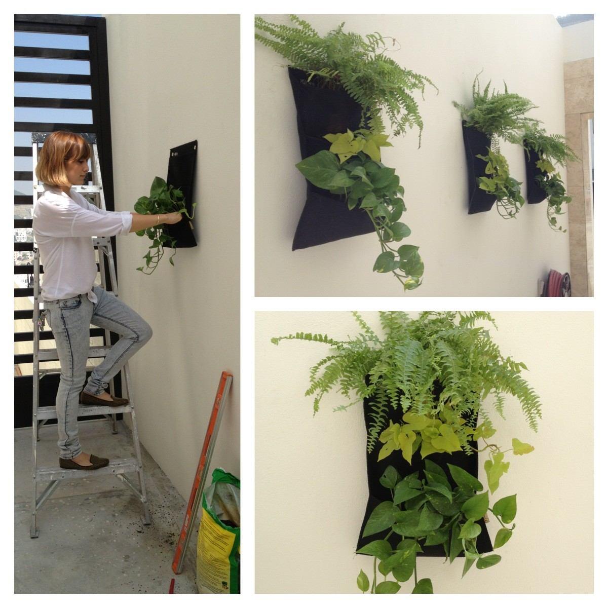 Jardines verticales decoraci n y plantas en for Plantas usadas para jardines verticales
