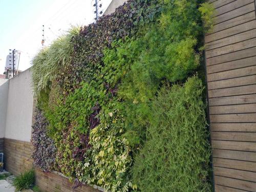 jardines verticales, diseño, mantenimiento y paisajismo