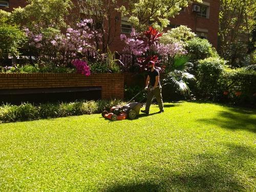 jardines verticales, diseños y mantenimientos