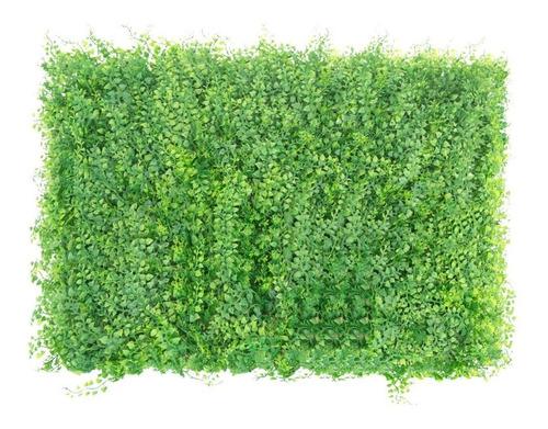 jardines verticales paneles 60 x 40 vertical green hipno