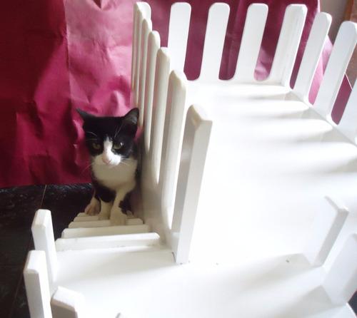 jaula casa cama en madera para gato conejo perros hamster