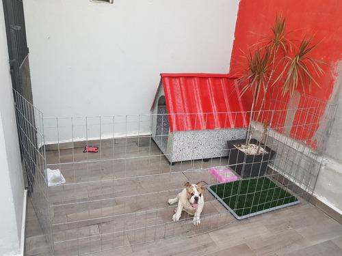 jaula casa corral para perro 75cm alto 8 paneles