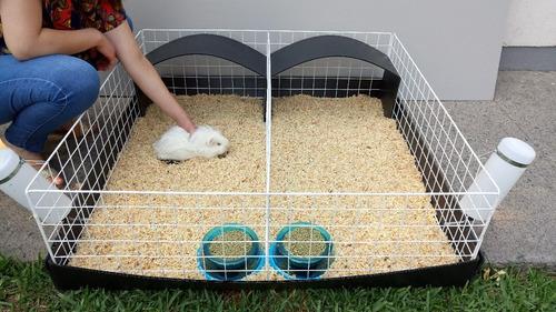 jaula corral 1 metro cuadrado para cuyos con división envío