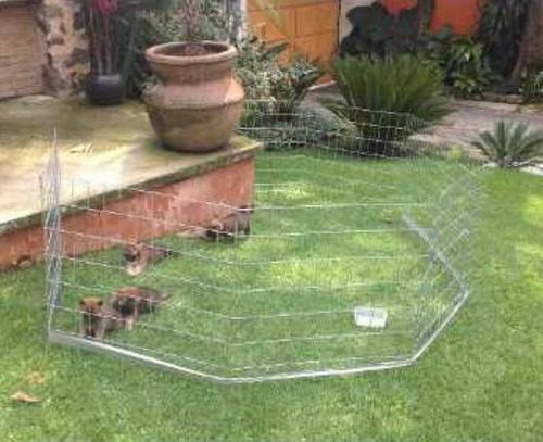 jaula corral para perro 75cm alto 6 paneles reforzado oferta
