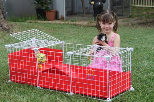 jaula desarmable p/ cuyo huron erizo conejo modelo c1