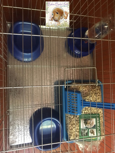jaula grande reforzada para pareja de conejos enanos