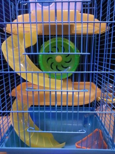 jaula hamster especial para hamsters rusos