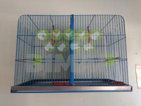 Jaula Para Canarios Periquitos Aves Pájaros Cría Grande