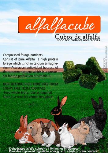 jaula para conejo extragrande 1 metro + 1kg de cubos alfalfa