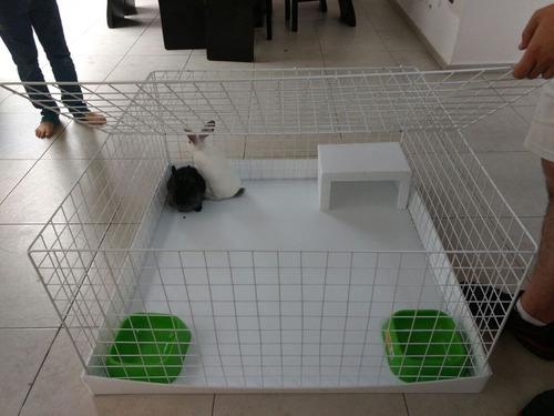 jaula para conejos 1 metro cuadrado 50cm de altura