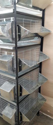 jaula para cuyes 5 pisos con forrajeras