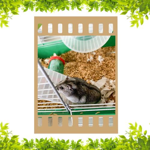 jaula para hamster con hamster ruso
