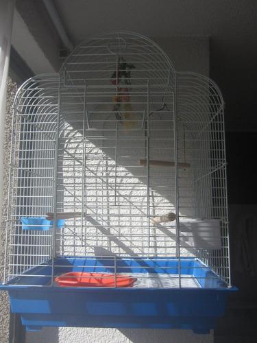 jaula para ninfa nueva