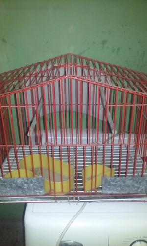 jaula para pajaros grande